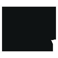 champion hoodie logo